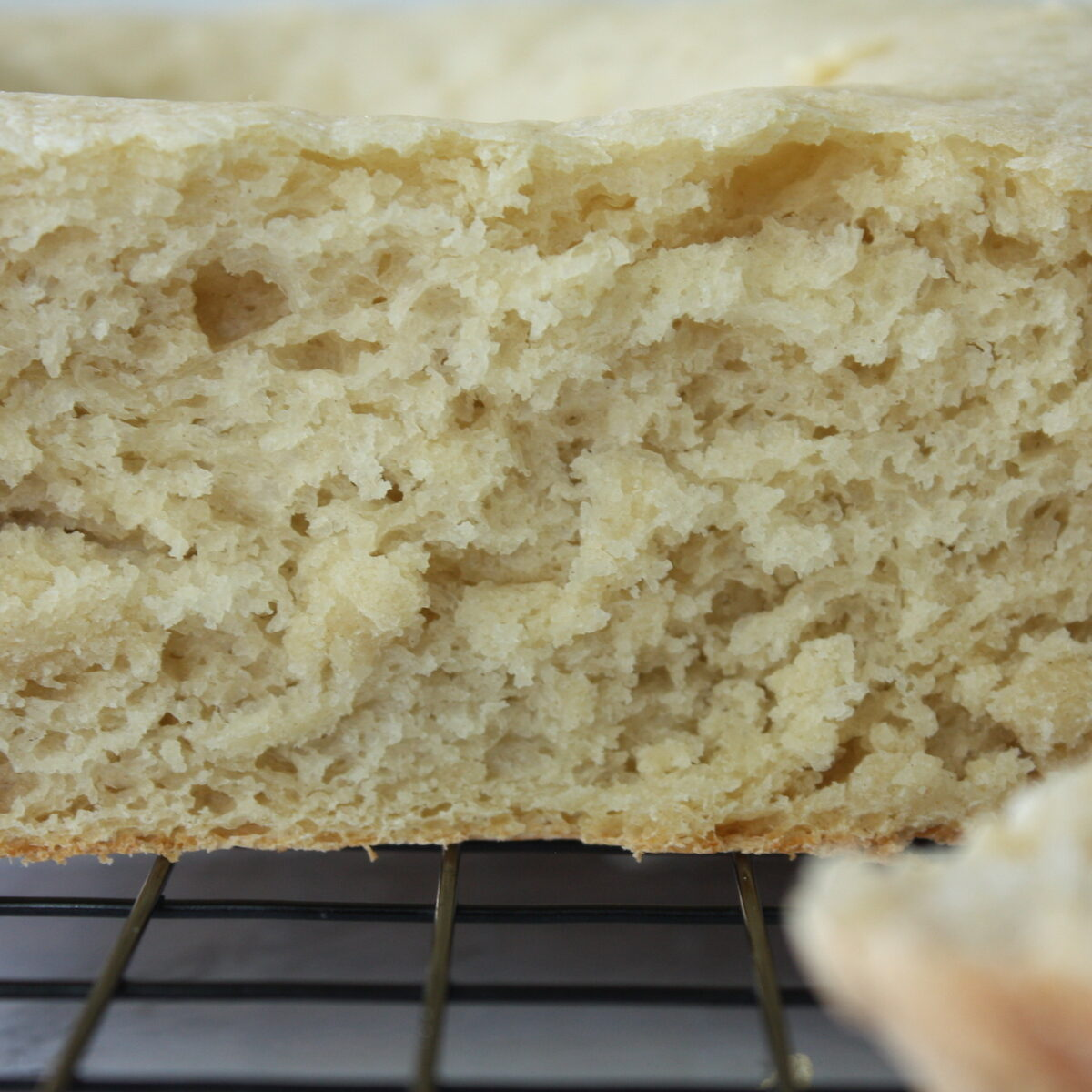 Close up image of slow cooker bread crumb