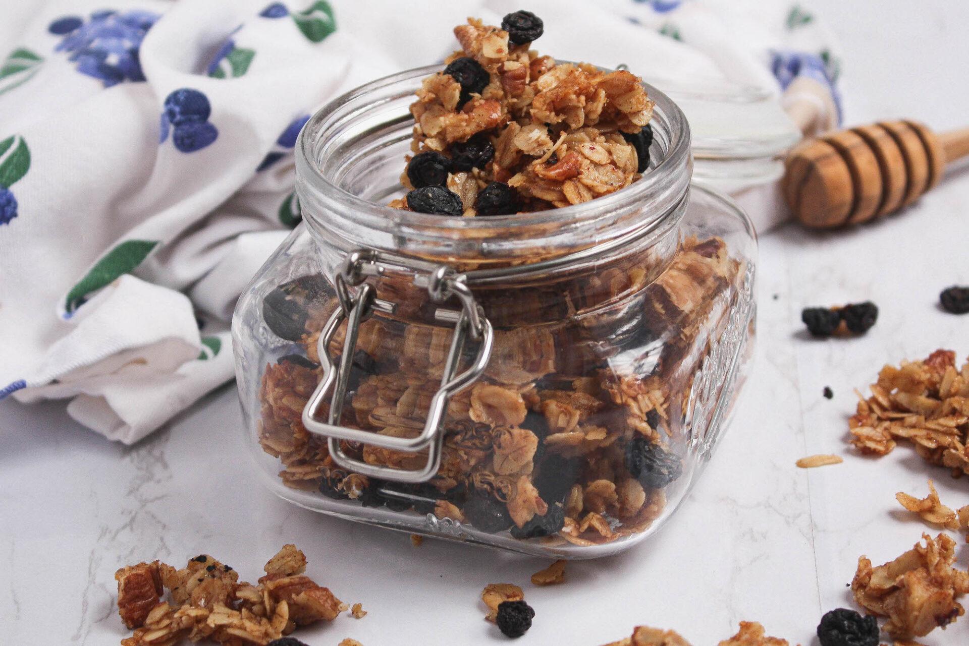 blueberry homemade granola | food blog | hearth health happiness